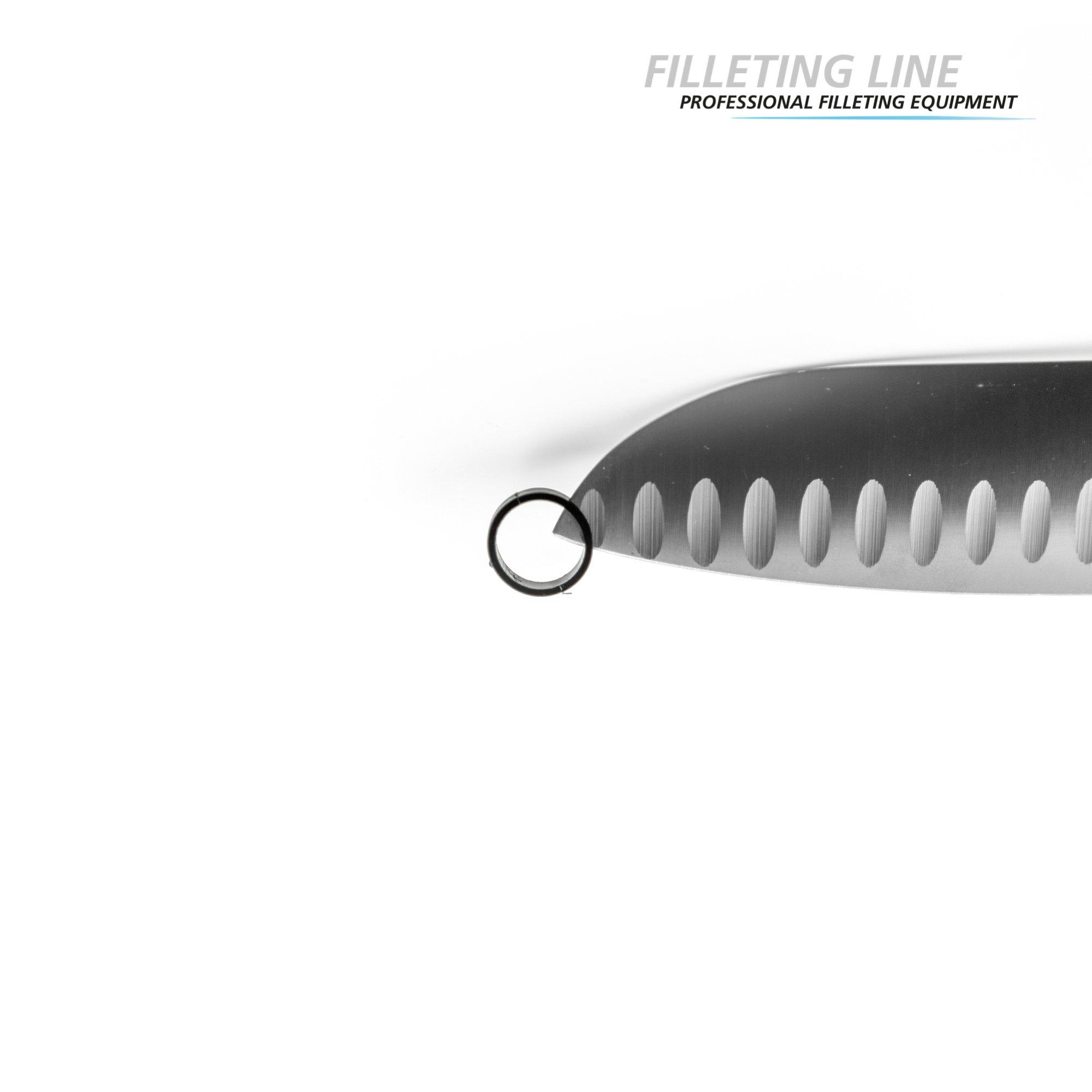 FILLETING LINE_2000x2000_DETAILS_logo-7